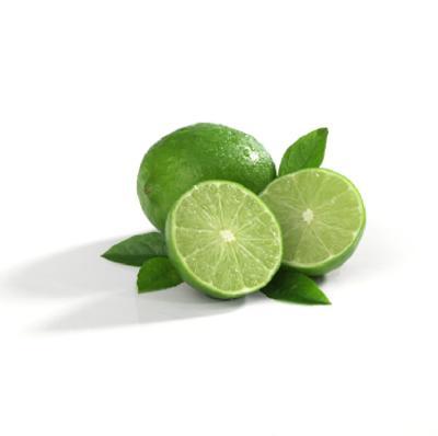 Citrus aurantifolia (Lime)