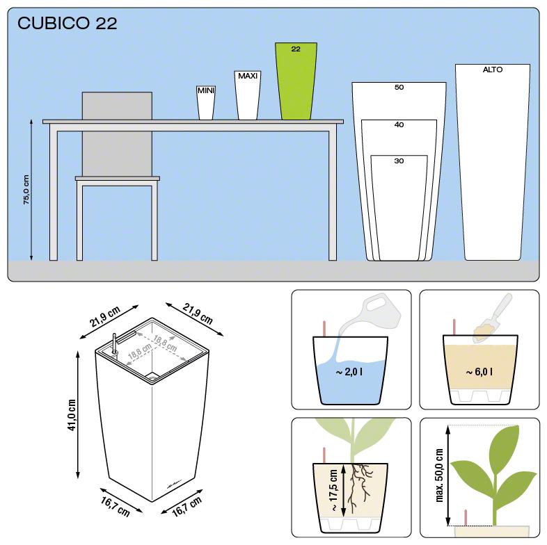 cubico_22_large
