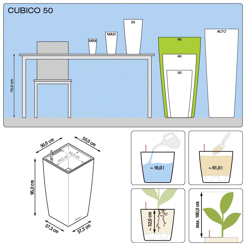 cubico_50_large